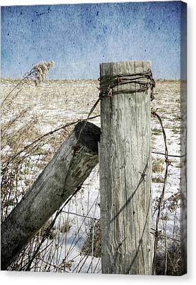 Of Wood And Wire Canvas Print by Christine Annas