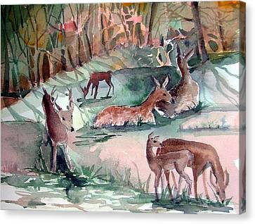 Oh Dear My Deer Canvas Print by Mindy Newman