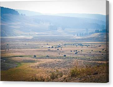 Canvas Print featuring the photograph Oh Home On The Range by Cheryl Baxter