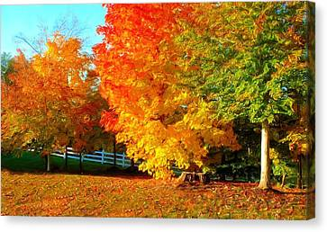Canvas Print featuring the photograph Ohio Autumn Maples by Dennis Lundell