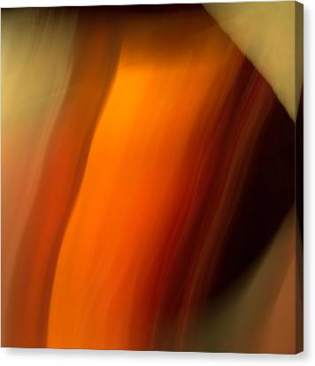 Canvas Print featuring the mixed media O'keefe I by Terence Morrissey