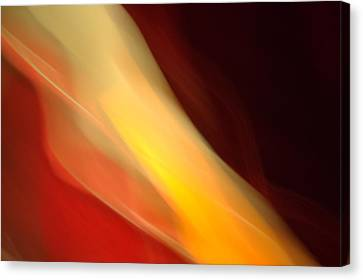 Canvas Print featuring the mixed media O'keefe Iv by Terence Morrissey