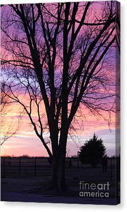 Oklahoma Sunset 2 Canvas Print