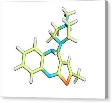 Olanzapine Antipsychotic Drug Molecule Canvas Print by Dr Tim Evans