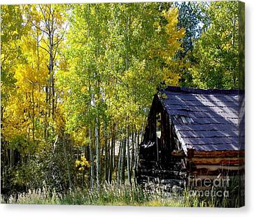 Old Cabin In The Golden Aspens Canvas Print by Donna Parlow