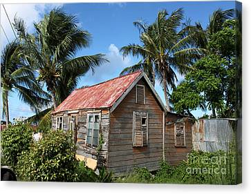 Old Chattel House 2 Canvas Print by Barbara Marcus