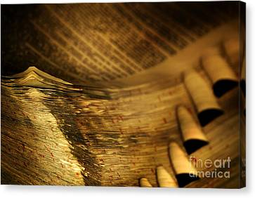 Dictionary Canvas Print - Old Dictionary by HD Connelly