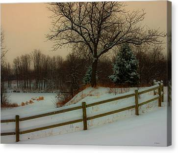 Old Fashiion Winter Canvas Print by Edward Peterson