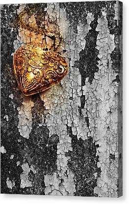 Old Heart  Canvas Print by Natee Srisuk