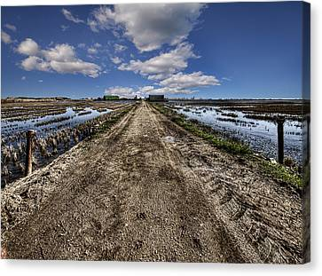 Old Highway Canvas Print by Gabriel Calahorra