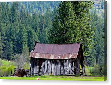Old Homestead Canvas Print by Linda Larson