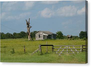 Old House On Land Canvas Print