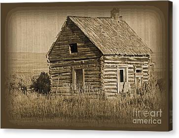 Old Hunting Cabin - Wyoming Canvas Print by Donna Greene