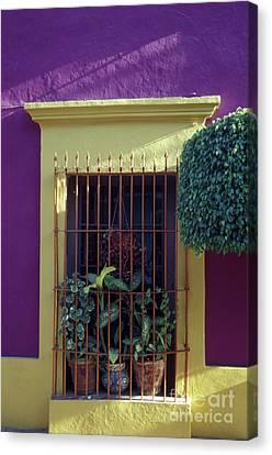 Canvas Print featuring the photograph Old Mazatlan Window by John  Mitchell