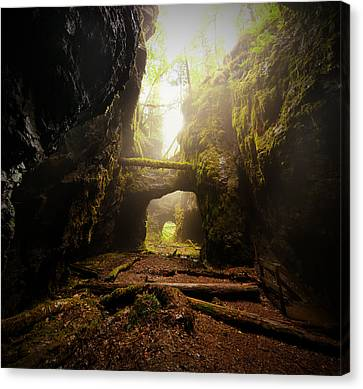 Canvas Print - Old Mine by Micael  Carlsson