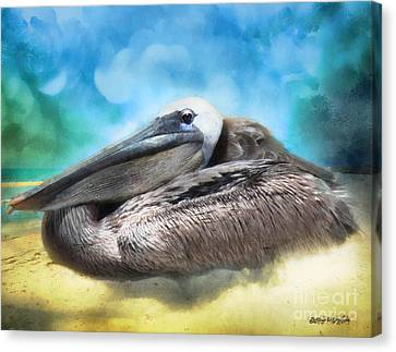 Old Mr. Pelican Canvas Print by Rhonda Strickland