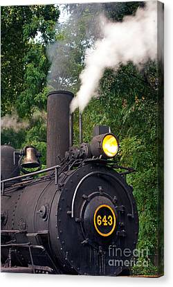 Old Number 643 Canvas Print by Paul W Faust -  Impressions of Light