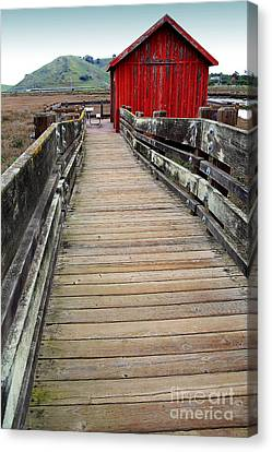 Old Red Shack At The End Of The Walkway Canvas Print by Wingsdomain Art and Photography