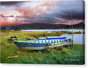Old Row Boats Canvas Print