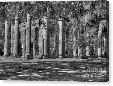 Old Sheldon Church Black And White Canvas Print