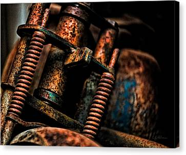 Old Springs Canvas Print by Christopher Holmes