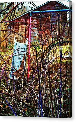 Old Swing Set Canvas Print by Todd Sherlock