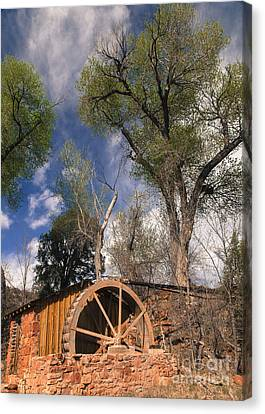 Old West Water Mill 1 Canvas Print by Darcy Michaelchuk