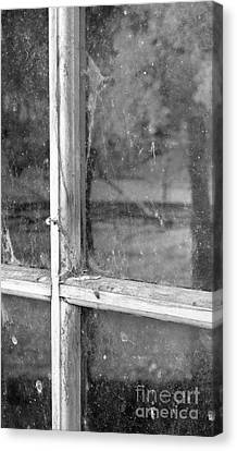 Old Window Reflection Canvas Print by Sandra Bronstein