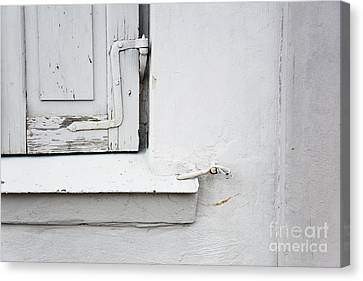 Canvas Print featuring the photograph Old Window Shutters Detail by Agnieszka Kubica