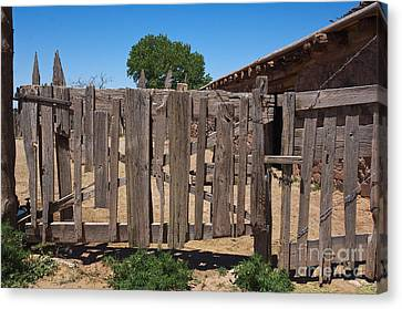 Old Wooden Fence Gate Canvas Print by Thom Gourley/Flatbread Images, LLC