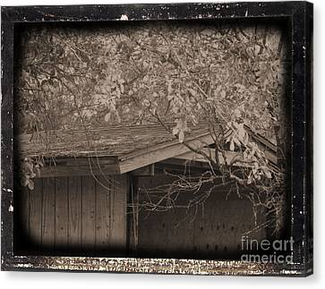 Oldshed Canvas Print by Tammy Herrin