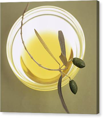 Olive Oil Canvas Print by Cristina Pedrazzini