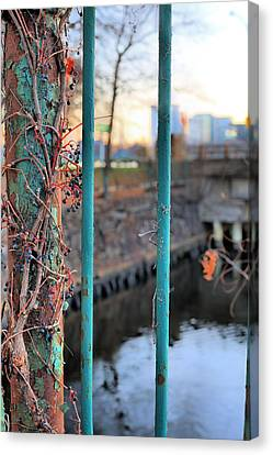 On The Fence Canvas Print by JC Findley