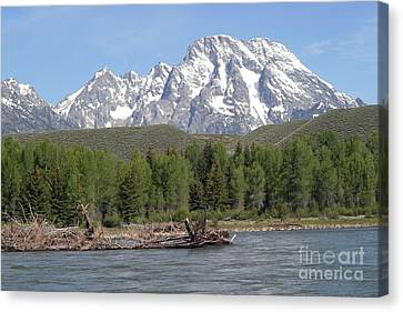 On The Snake River Canvas Print by Living Color Photography Lorraine Lynch