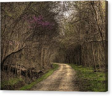On This Trail Canvas Print by William Fields