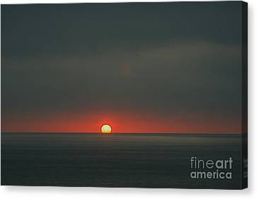 Canvas Print featuring the photograph One Day At The Time by Nicola Fiscarelli
