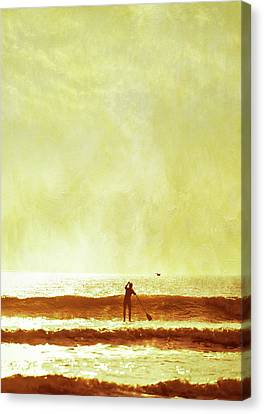 One Man And His Gull Canvas Print by s0ulsurfing - Jason Swain