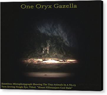 Nanomicroinfinity Jumbo Art Canvas Print - One Oryx Gazella  by Phillip H George