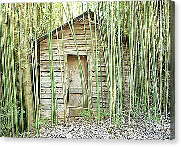 One Room House With Bamboo Canvas Print by Renee Trenholm
