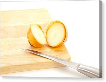 Stainless Steel Canvas Print - Onion by Tom Gowanlock