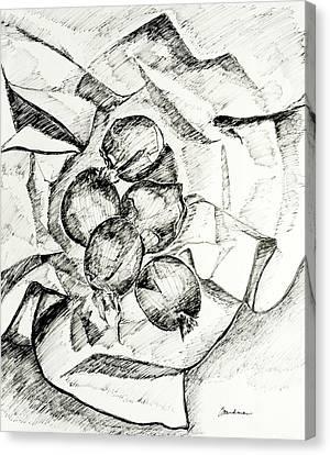 Onions Canvas Print by Lynda K Boardman