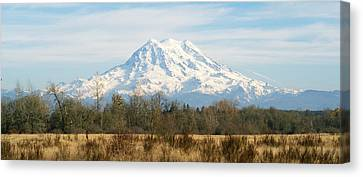 Canvas Print featuring the photograph Open Range by Rob Green