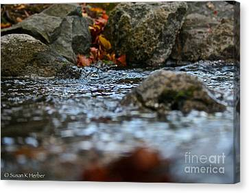 Opposite Shore Canvas Print by Susan Herber