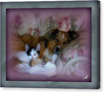 Canvas Print featuring the photograph Opposites Attract by Michelle Frizzell-Thompson