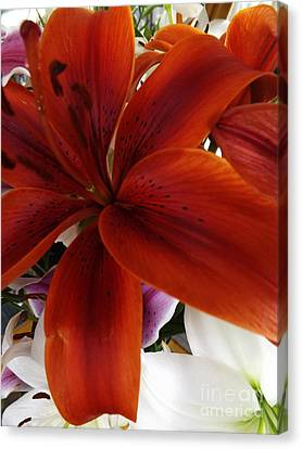 Canvas Print featuring the photograph Orange Glow by Gary Brandes
