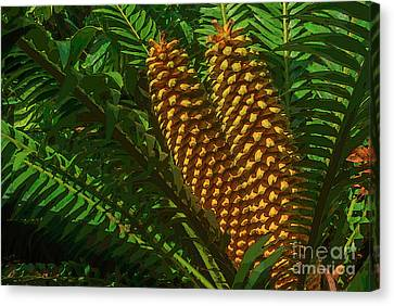 Orange Palm Hearts Canvas Print by Herb Paynter