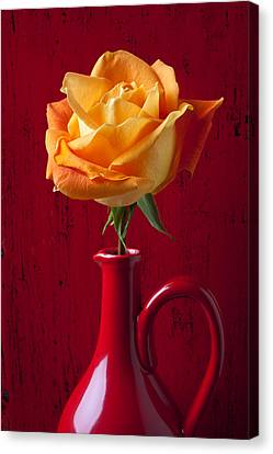 Orange Rose In Red Pitcher Canvas Print by Garry Gay