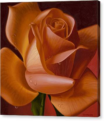 Orange Rose With Red Background Canvas Print by Tony Chimento