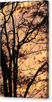 Orange Silhouette Canvas Print