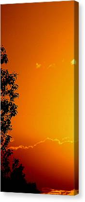 Orange Silhouette Canvas Print by Louise Mingua
